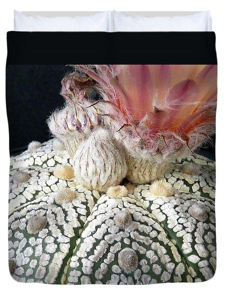 Cactus Flower 6 Duvet Cover by Selena Boron