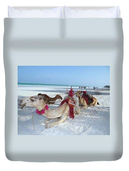 Camel On Beach Kenya Wedding4 Duvet Cover