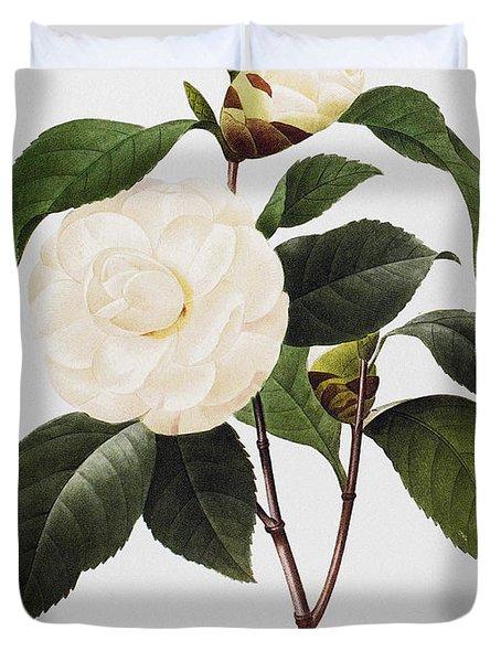 Camellia, 1833 Duvet Cover