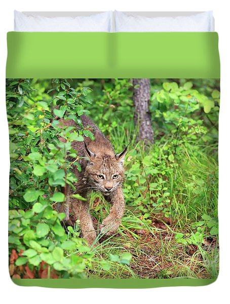 Canada Lynx Duvet Cover by Louise Heusinkveld