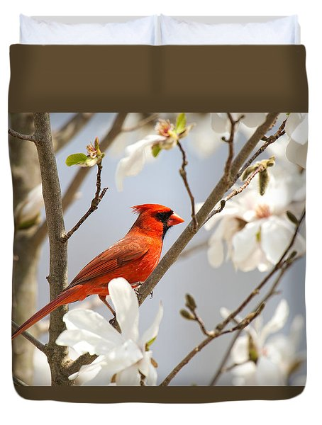 Duvet Cover featuring the photograph Cardinal In Magnolia by Angel Cher