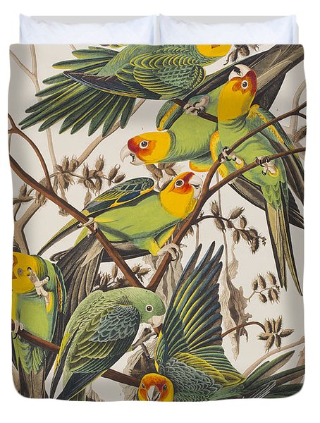 Carolina Parrot Duvet Cover by John James Audubon