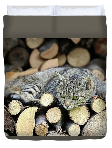 Duvet Cover featuring the photograph Cat Resting On A Heap Of Logs by Michal Boubin