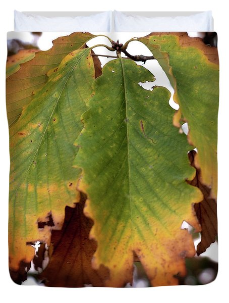 Changing Leaves Duvet Cover