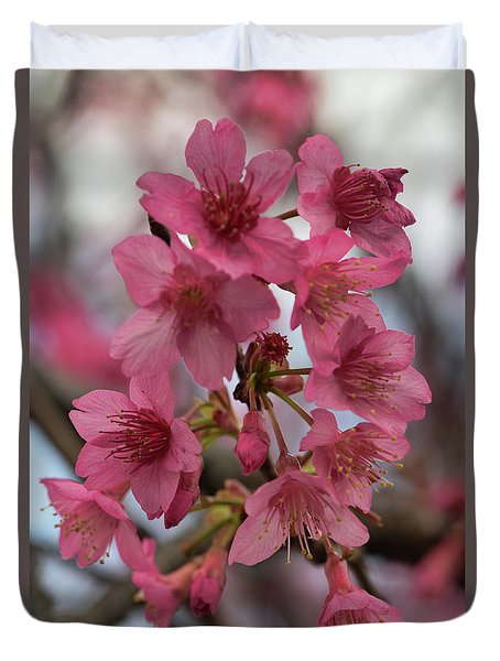 Duvet Cover featuring the photograph Cherry Blossoms by Pamela Walton