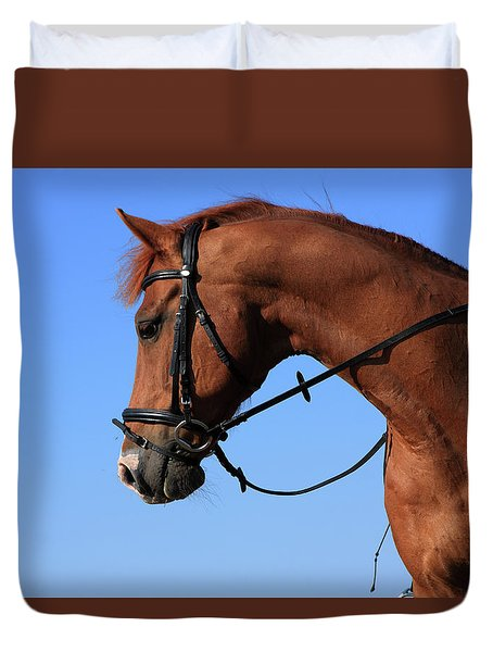Chestnut Horse And Rider Duvet Cover