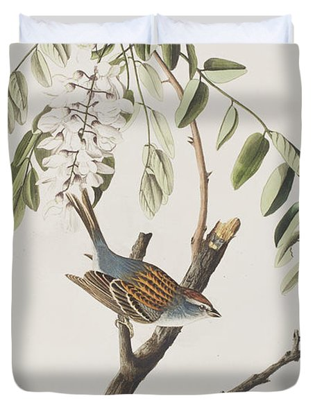 Chipping Sparrow Duvet Cover by John James Audubon
