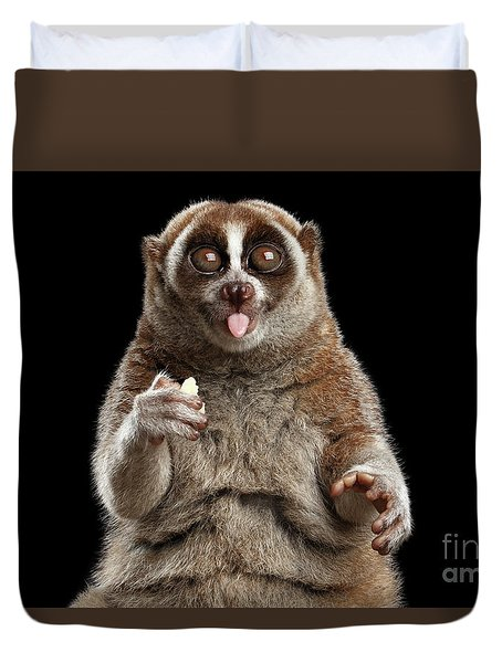 Close-up Lemur Slow Loris Isolated Black Background Duvet Cover