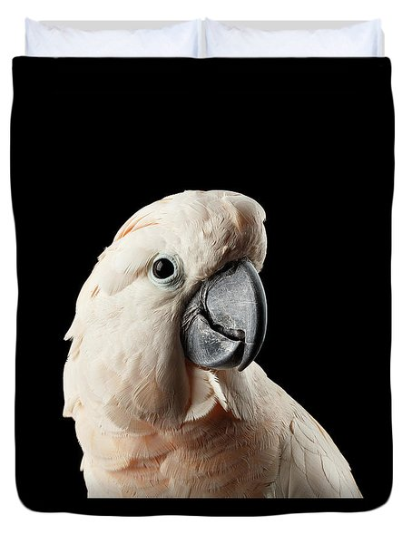 Closeup Head Of Beautiful Moluccan Cockatoo, Pink Salmon-crested Parrot Isolated On Black Background Duvet Cover
