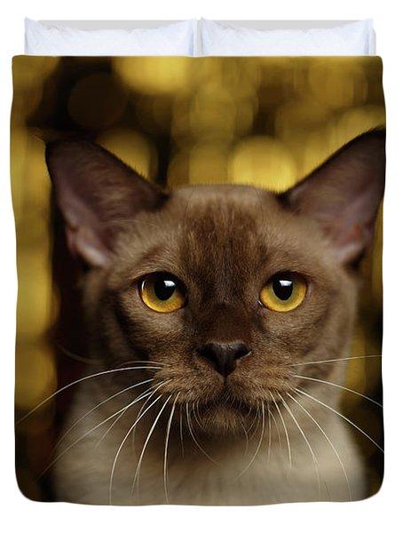 Closeup Portrait Burmese Cat On Happy New Year Background Duvet Cover
