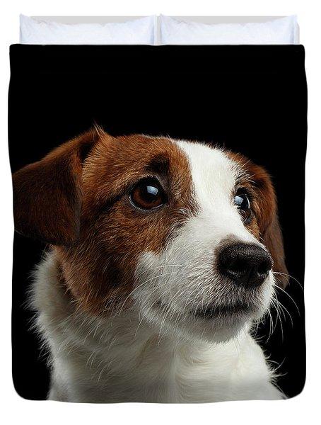 Closeup Portrait Of Jack Russell Terrier Dog On Black Duvet Cover