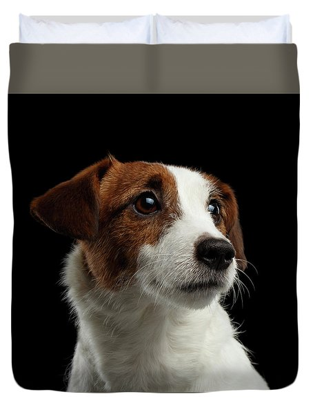 Closeup Portrait Of Jack Russell Terrier Dog On Black Duvet Cover by Sergey Taran