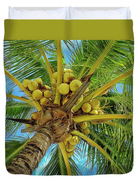 Coconuts In Tree Duvet Cover