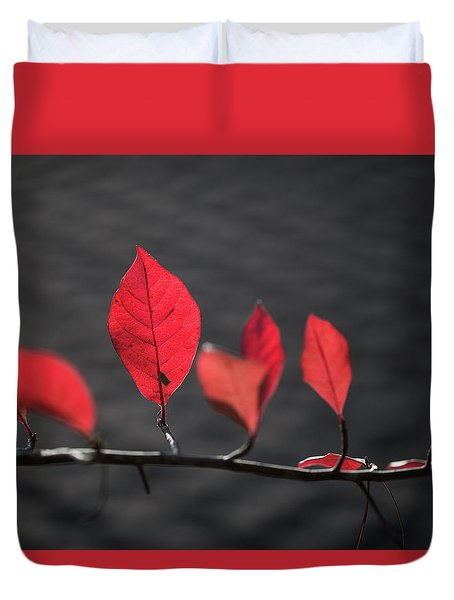 Colorful Tree Leaves Changing Color For Auyumn,fall Season In Oc Duvet Cover