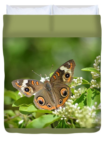 Common Buckeye Duvet Cover