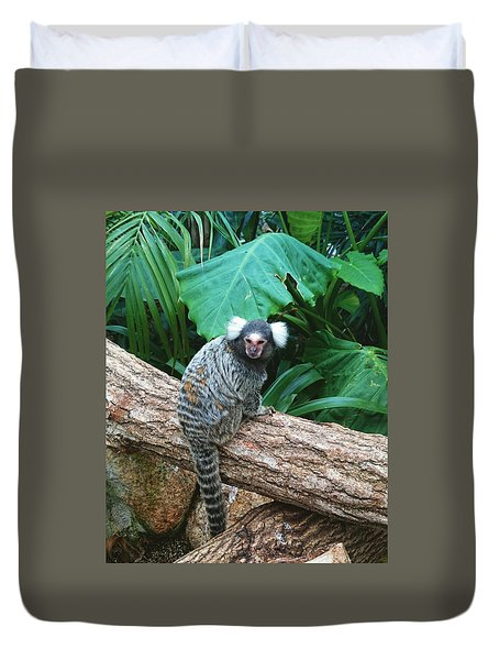 Commonmarmoset  Duvet Cover