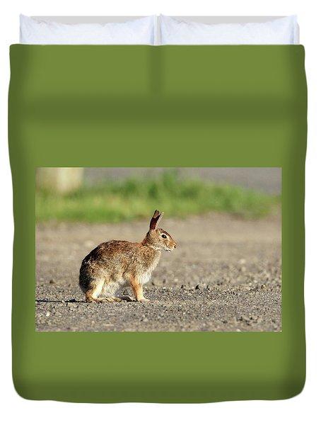 Cottontail Rabbit Stony Brook New York Duvet Cover