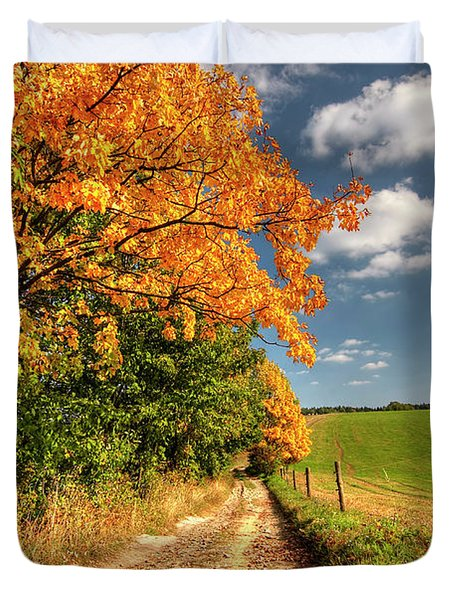 Country Road And Autumn Landscape Duvet Cover by Michal Boubin