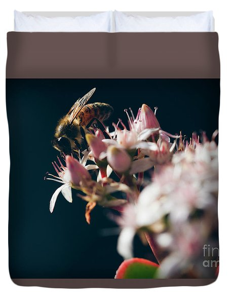 Duvet Cover featuring the photograph Crassula Ovata Flowers And Honey Bee  by Sharon Mau