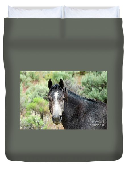 Curious Duvet Cover by Michele Penner