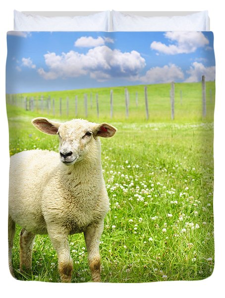 Cute Young Sheep Duvet Cover