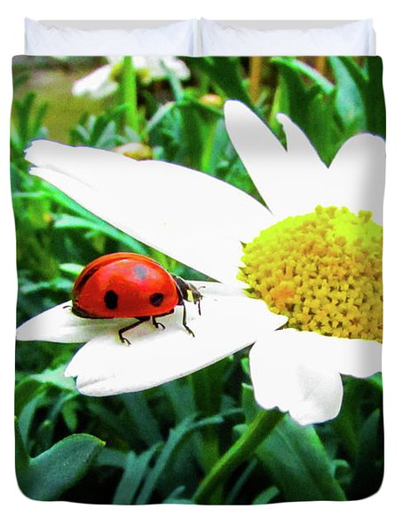 Daisy Flower And Ladybug Duvet Cover by Cesar Vieira