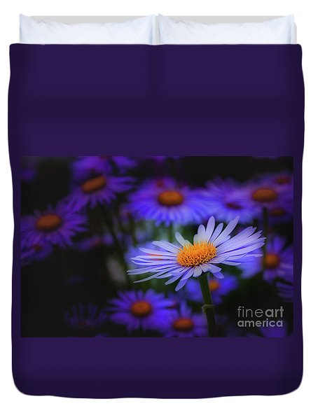 Daisy  Duvet Cover by Jim  Hatch