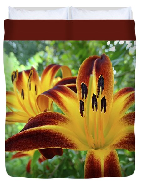 Daylilies At Daybreak Duvet Cover by Rebecca Overton
