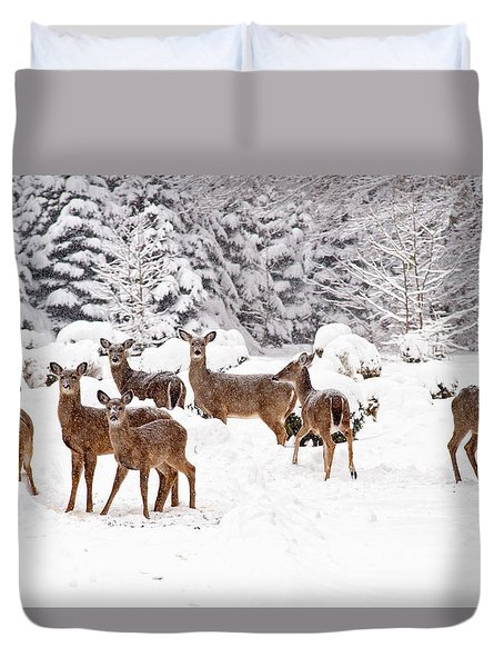 Duvet Cover featuring the photograph Deer In The Snow by Angel Cher
