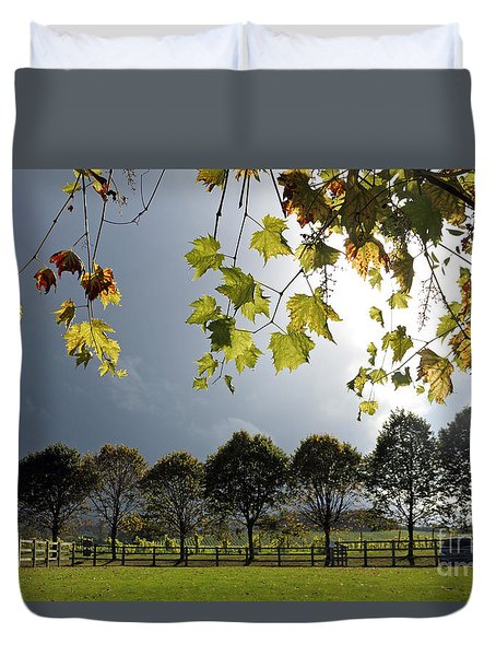 Denbies Vineyard Surrey Uk Duvet Cover