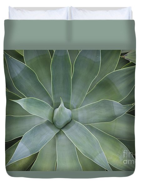 Detail Of An Agave Attenuata Duvet Cover