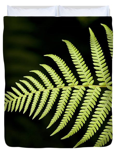 Detail Of Asian Rain Forest Ferns Duvet Cover