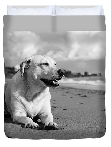 Dog - Monochrome 5  Duvet Cover