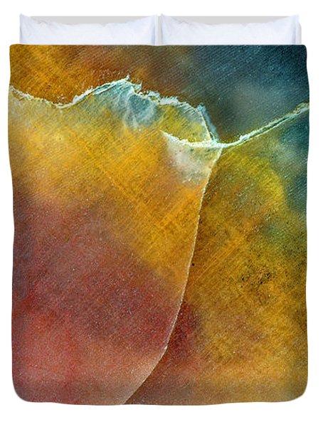 Earth Portrait 001 Duvet Cover