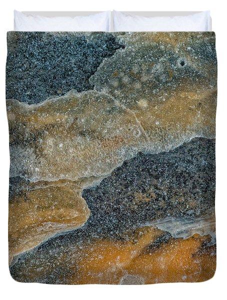 Earth Portrait 283 Duvet Cover
