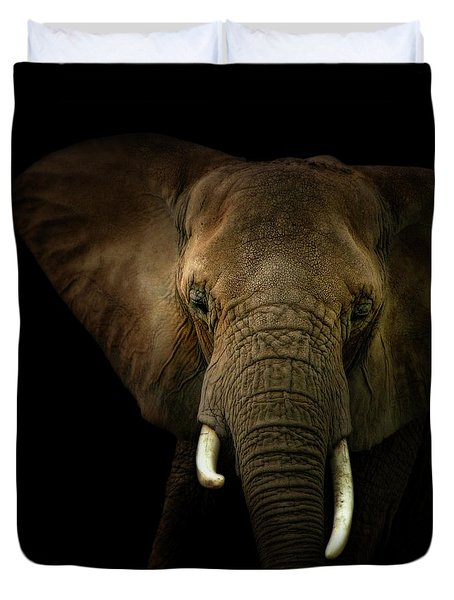 Elephant Against Black Background Duvet Cover