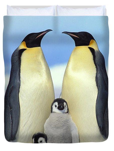 Emperor Penguin Aptenodytes Forsteri Duvet Cover