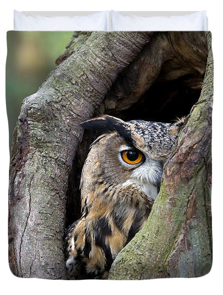 Duvet Cover featuring the photograph Eurasian Eagle-owl Bubo Bubo Looking by Rob Reijnen