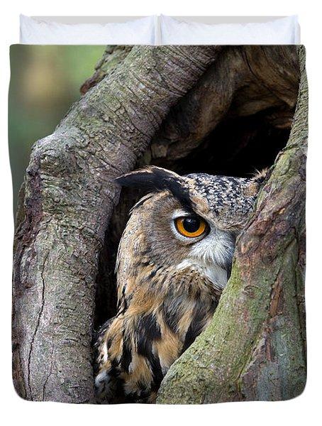 Eurasian Eagle-owl Bubo Bubo Looking Duvet Cover by Rob Reijnen