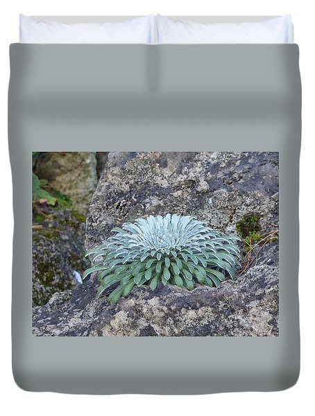 Exotic Plant Duvet Cover