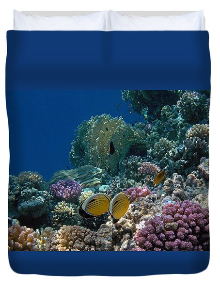 Exquisite Butterflyfish In The Red Sea Duvet Cover