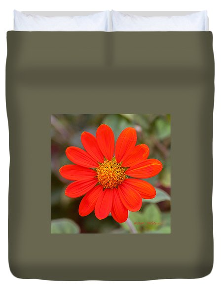 Duvet Cover featuring the photograph Fall Flower by Edward Peterson