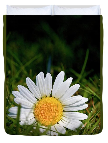 Duvet Cover featuring the photograph Fallen Daisy by Scott Holmes