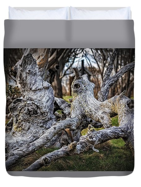 Fallen From Grace Duvet Cover by Mark Lucey