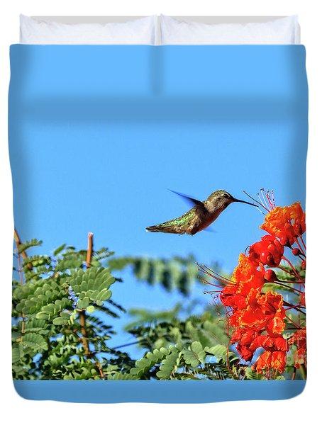 Duvet Cover featuring the photograph Feeding  Anna's Hummingbird by Robert Bales
