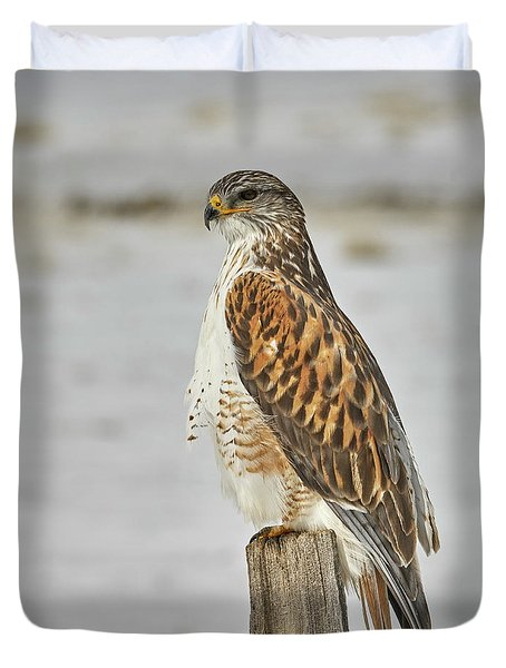 Ferruginous Hawk Duvet Cover by Doug Herr