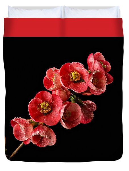 Flowering Quince Duvet Cover