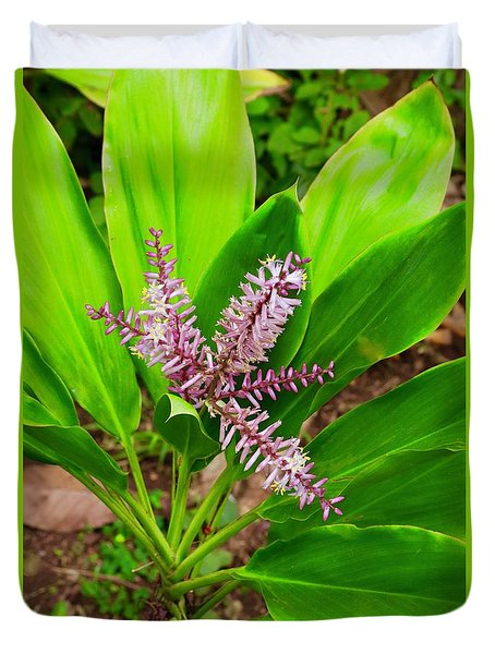 Flowering Ti Plant Duvet Cover