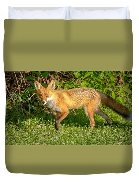 Fox Portrait  Duvet Cover