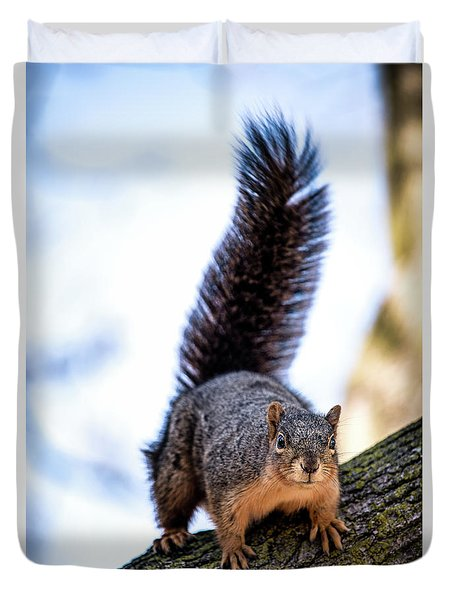 Duvet Cover featuring the photograph Fox Squirrel On Alert by Onyonet  Photo Studios